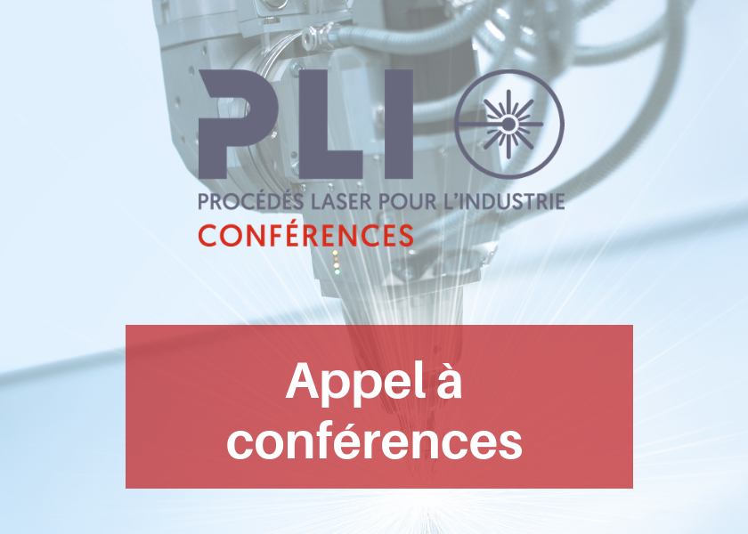 Call for conference papers – PLI 2019
